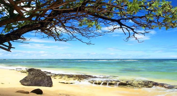 美国天宁岛丘鲁海滩旅游景点介绍