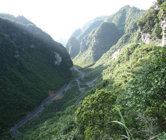 绥阳宽阔水原始森林旅游景点风景